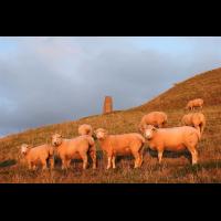 Cornwall + South of England  Oct. 2018.JPG (Olaf Liesche)