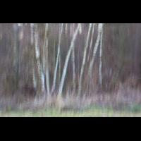IMG_3683_1.8_1.0s_125_Wischer_Engen.jpg (Gabi Buschmann)
