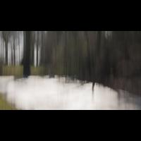 20180213_9---Kopie.jpg (Corela)