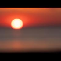 20190515_1303-OlyWB.jpg (Corela)