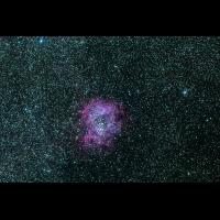 rosette-2.jpg (jason37)