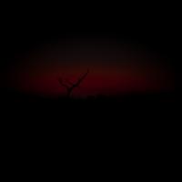 Sonnenuntergang-3024.jpg (Harald Esberger)