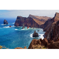 Madeira.jpg (schaubinio)