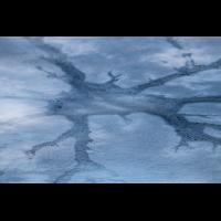 IMG_4209_Der Geist im Eis_Beschnitt0%_.jpg (Harmonie)