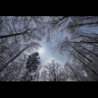 IMG_7441_.jpg (Harmonie)