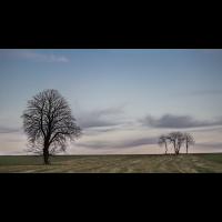 IMG_7465_.jpg (Harmonie)