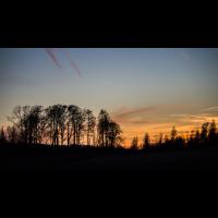 IMG_7467 -.jpg (Harmonie)
