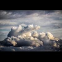 IMG_8182_.jpg (Harmonie)