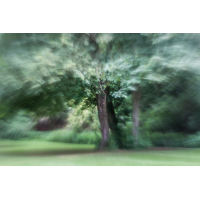 IMG_7689_.jpg (Harmonie)