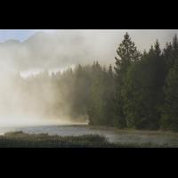 DSC08502 Morgens wenn die Nebel weichen... kl.jpg (kabefa)