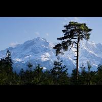 DSC09502 Werdenfelser Himalaya... kl.jpg (kabefa)