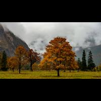 Autumn500.jpg (Nikonudo)
