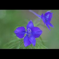 2019-06-14-22-00-16-(B,Radius8,Smoothing4)-1.jpg (Nikonudo)