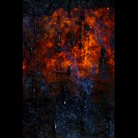 20170227-_DSC0410-klein.jpg (MichaSauer)