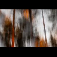 _DSC7095-klein.jpg (MichaSauer)
