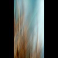 IMG_5786.JPG (mosofreund)
