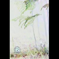 IMG_3113.jpg (mosofreund)