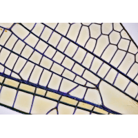 SK28-M5,5x-Bl3,3-104x0,01mm-1xLed-Panel-vunten-2018-11-03-22-14-08-(C)LR-IA--Kopie.jpg (Gogs)