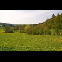 gruenland_intensiv_144.jpg (Artengalerie)