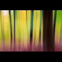 _MG_9621-1 (1200px).jpg (mehr-licht)