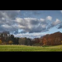 Weiden, Wald und Wolken.jpg (Il-as)