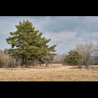 Naturschutzgebiet.jpg (Il-as)